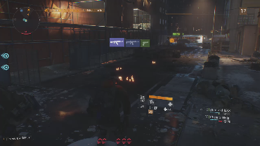 One Wyld Fox playing Tom Clancy's The Division